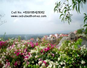 buy house and lot in cebu - landscaped gardens